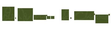 Dr Monica Chiperi - Logo Signatur